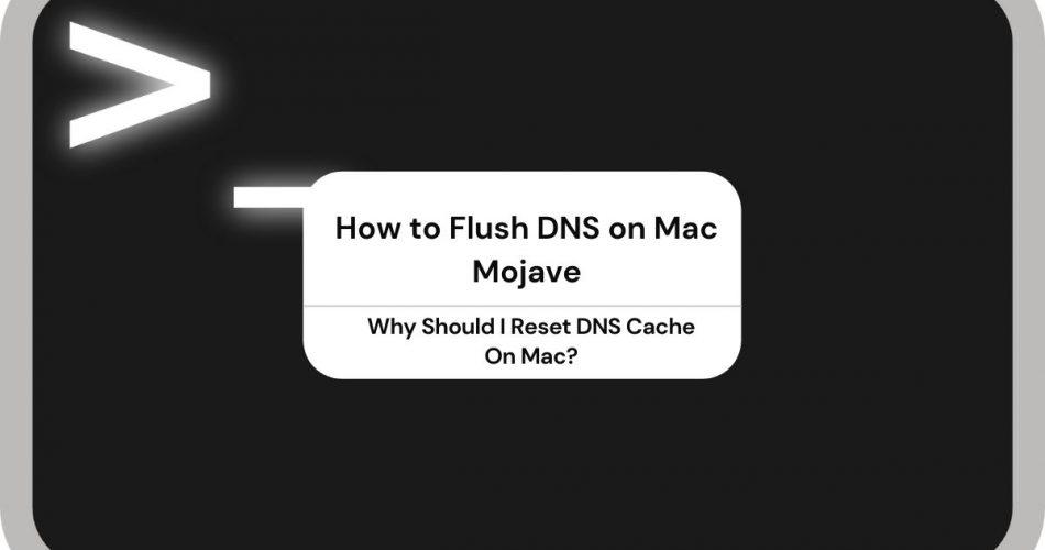 Flush DNS on Mac Mojave